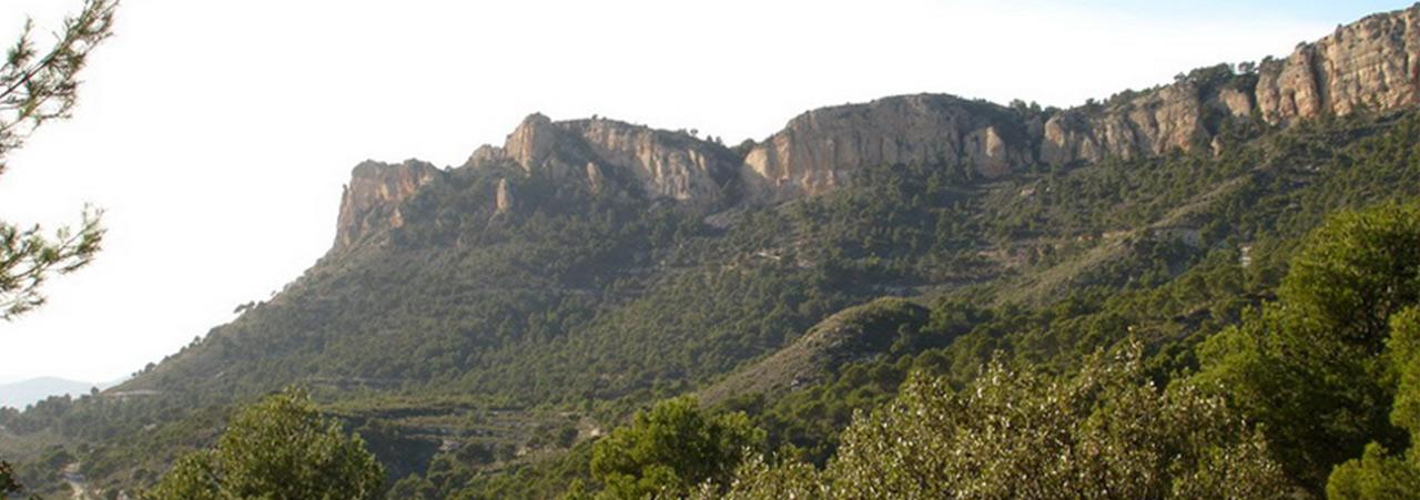 CASTALLA_